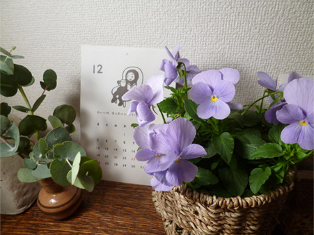 12月のお花