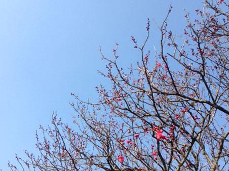 出張 in 福岡